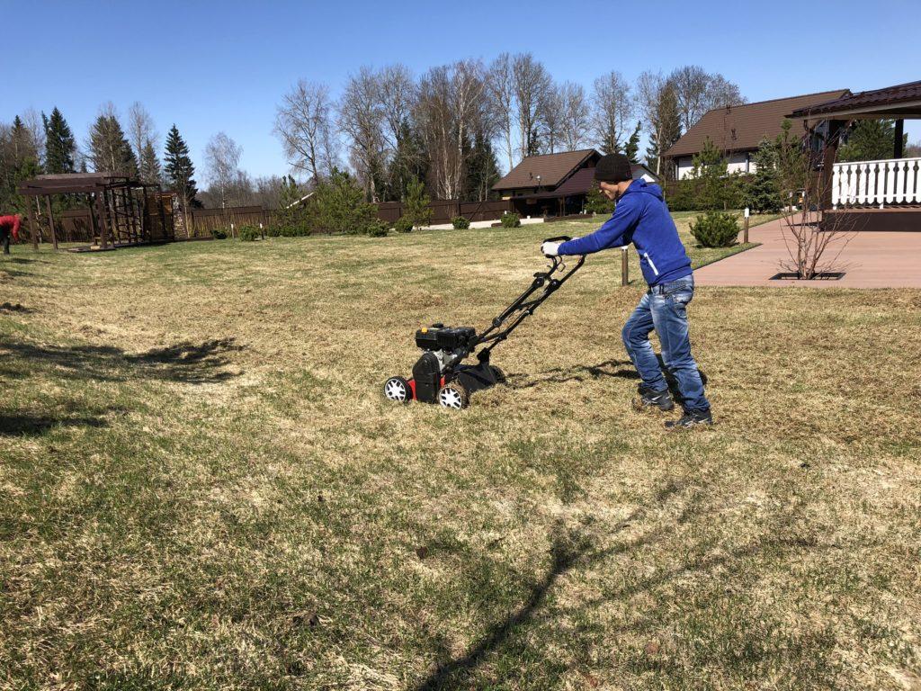 Комплексный уход за садом: стрижка газона